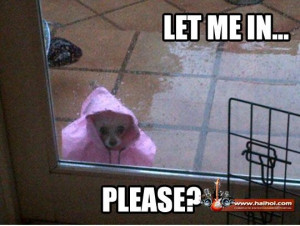 Funny Rainy Day | home Videos Galleries Pictures SMS Jokes Jokes