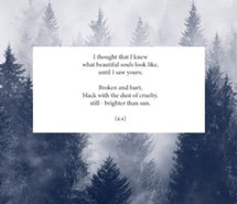 forest, overlay, pale, poem, poetic, poetry, soft grunge, woods