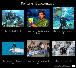 marine meme http uthinkido com what people think i do gallery job