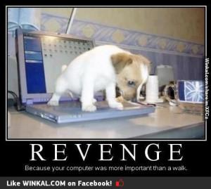Revenge So perfect!!!