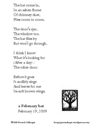 february-bat.jpg