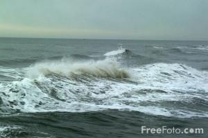 Rough Seas Quotes