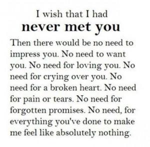 116083 I Wish I Had Never Met You jpg