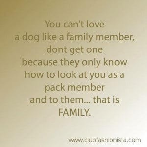 dogs #love #family #QOTD #quotes #quote