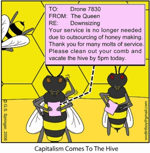 14) Bee layoffs at the hive