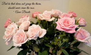 Rose Quotes About Life grasp-the-rose-quote