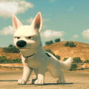 Related Pictures disney s bolt funny pictures bolt is a zombie