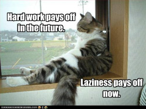 funny-pictures-cat-is-lazy