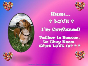 ... =http://www.pics22.com/i-am-confused-animal-quote/][img] [/img][/url