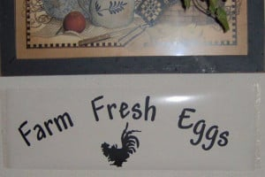 DIY Kitchen wall decals Farm Fresh Eggs quotes by CasaBellaVinyl, $10 ...