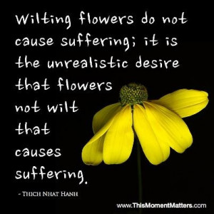 Love this quote from Thich Nhat Hanh - what REALLY causes suffering?
