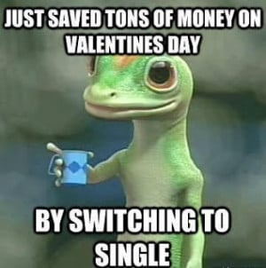 Single on Valentines Day funny facebook quote