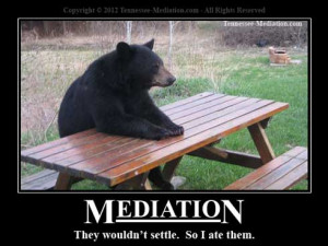 The Most Amazing Funny Bear Pictures (24 Pics)