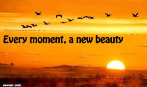 ... صور فيس بوك tagged amazing beautiful moments quotes