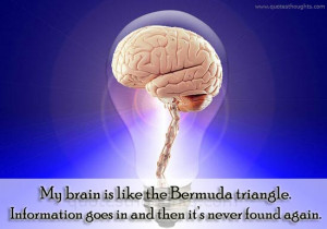 Funny Quotes-Thoughts-Bermuda Triangle-Best Quotes
