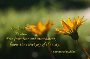 ... www.pics22.com/look-within-be-still-buddhist-quote/][img] [/img][/url
