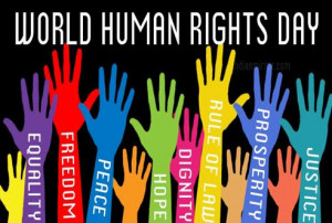 Human Rights Day 2013 | Quotes | Slogans | International | United ...