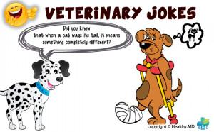 Veterinary Medicine Jokes
