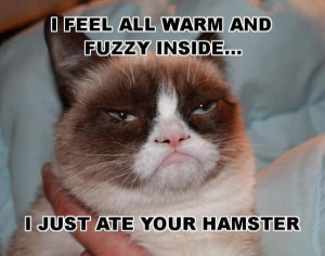 fell all warm and fuzzy - Funny pictures