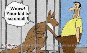 Funny Kangaroo Joke Cartoon