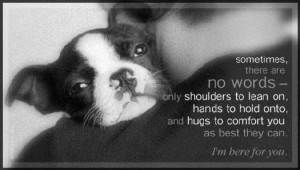 Simple Dog Quotes - Bing Images