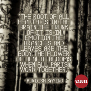 health is in the brain. The trunk of it is in emotion. The branches ...