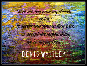 Quotes for Motivation and Inspiration 3 Denis Waitley