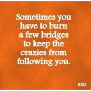 funny sometimes you have to burn a few bridges to keep the crazies ...