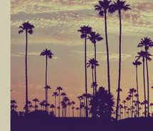 california-summer-quote-life-vintage-752071.jpg
