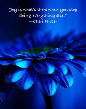 Joy is what's there when you stop doing everything else.