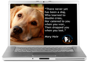 Dog Friendship Screensaver