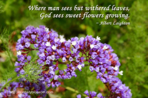 God's Beautiful Creation Quotes http://ourdailyblossom.com/2011/04/18 ...