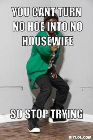 ... generator-you-cant-turn-no-hoe-into-no-housewife-so-stop-trying-4a844b
