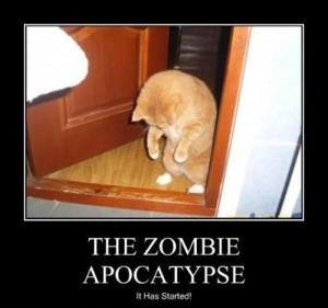 The Zombie Apocalypse – It Has Begun!