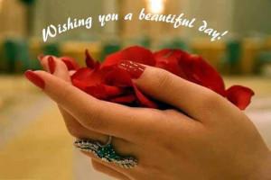 Wishing you a beautiful day !