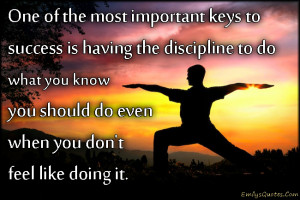 One Of The Most Important Keys To Success Is Having The Discipline To ...