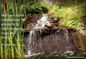 Thich Nhat Hanh quote photo | Dianna Bonny Photography