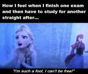 Funny Frozen Quotes Elsa. QuotesGram