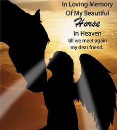 Horses in Heaven Quotes | In Loving Memory Of My Horse In Heaven More