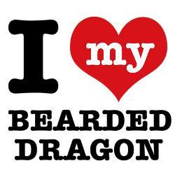 love_my_bearded_dragon_calendar_print.jpg?height=250&width=250 ...