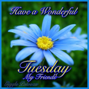 Have a wonderful Tuesday my friends