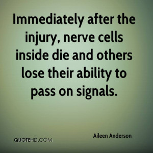 Immediately after the injury, nerve cells inside die and others lose ...