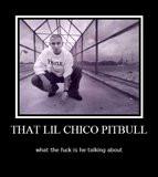 Pitbull Rapper Graphics | Pitbull Rapper Pictures | Pitbull Rapper ...