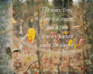 Displaying 17> Images For - Fall Pictures With Scripture...