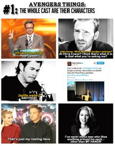Avengers: The whole cast are their characters