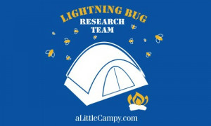 Little Campy Lightning Bug Research Team