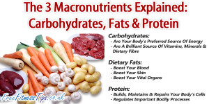 Proteins Carbohydrates and Fats