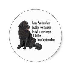 Newfoundland Funny Dogs Original Art Print - Humorous Dog Breed Art ...