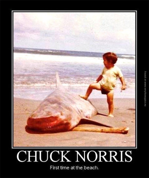 Chuck Norris at the beach