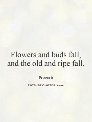 Death Quotes Flower Quotes Fall Quotes Proverb Quotes Aging Quotes